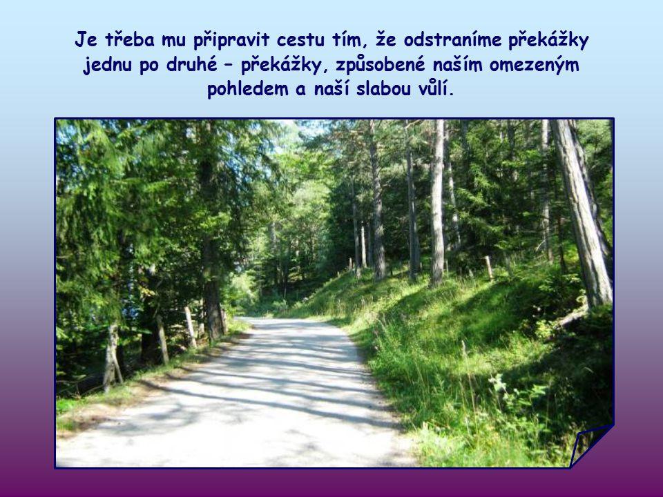 Každý z nás je povolaný připravit cestu Ježíšovi, který chce vstoupit do našeho života.