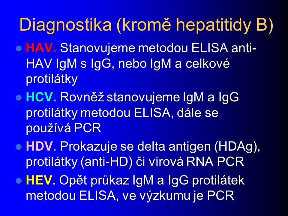Diagnostika (kromě hepatitidy B) HAV.