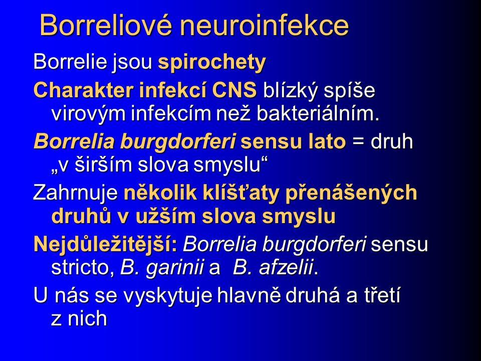 Borreliové neuroinfekce Borrelie jsou spirochety Charakter infekcí CNS blízký spíše virovým infekcím než bakteriálním.