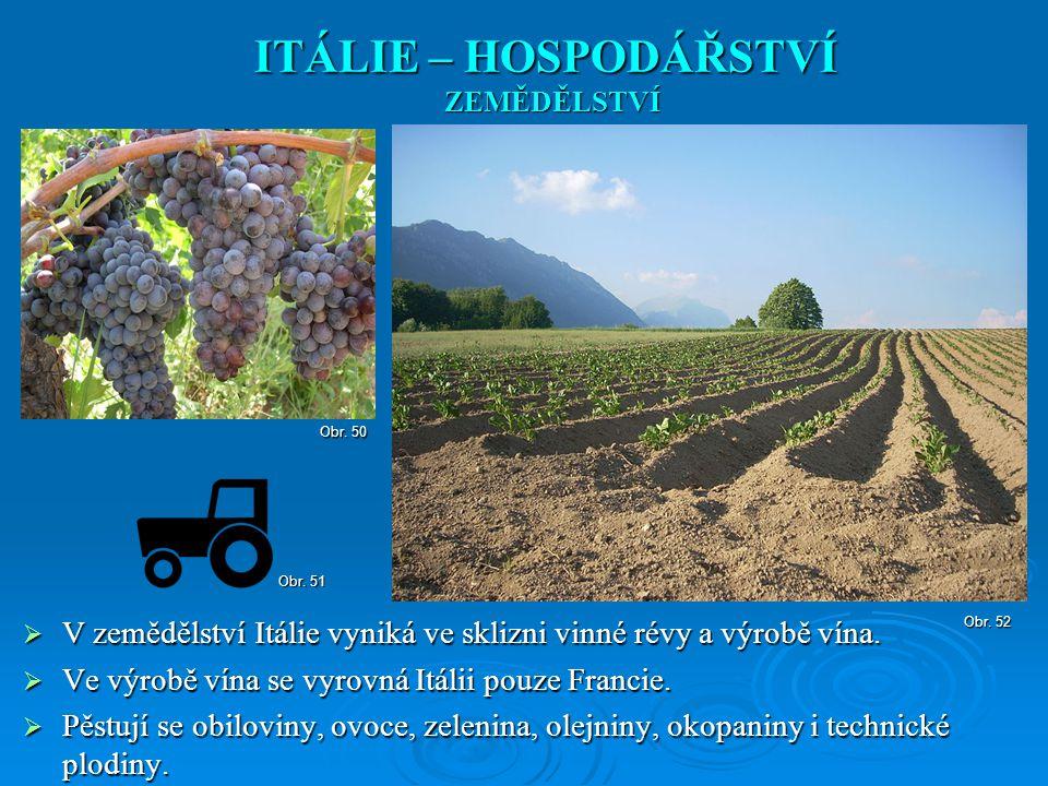  V zemědělství Itálie vyniká ve sklizni vinné révy a výrobě vína.  Ve výrobě vína se vyrovná Itálii pouze Francie.  Pěstují se obiloviny, ovoce, ze
