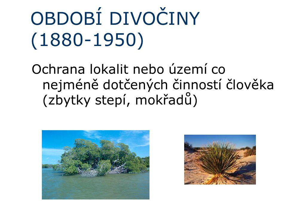 OBDOBÍ DIVOČINY (1880-1950) Ochrana lokalit nebo území co nejméně dotčených činností člověka (zbytky stepí, mokřadů)