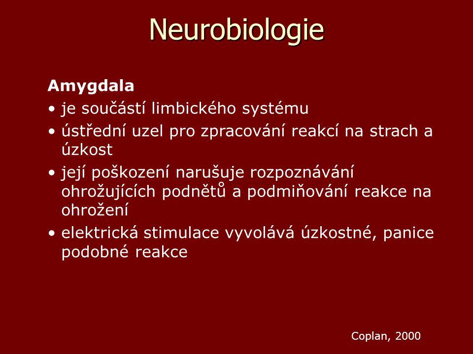 Neurobiologie Amygdala je součástí limbického systému ústřední uzel pro zpracování reakcí na strach a úzkost její poškození narušuje rozpoznávání ohro