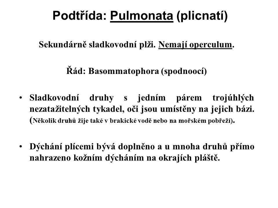 Podtřída: Pulmonata (plicnatí) Sekundárně sladkovodní plži.