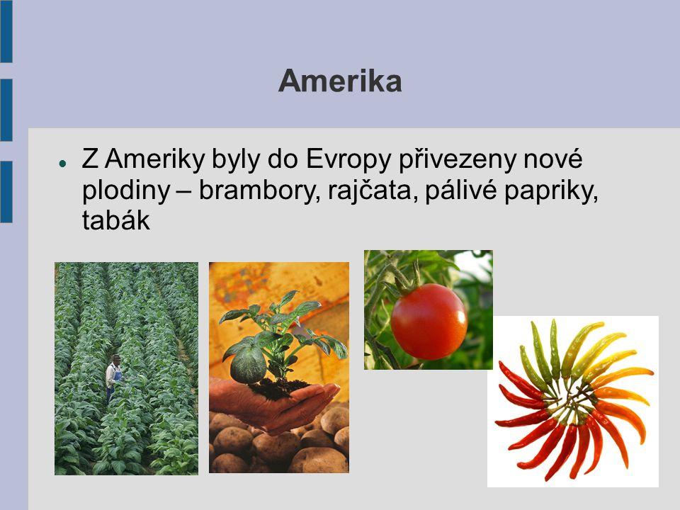 Amerika Z Ameriky byly do Evropy přivezeny nové plodiny – brambory, rajčata, pálivé papriky, tabák