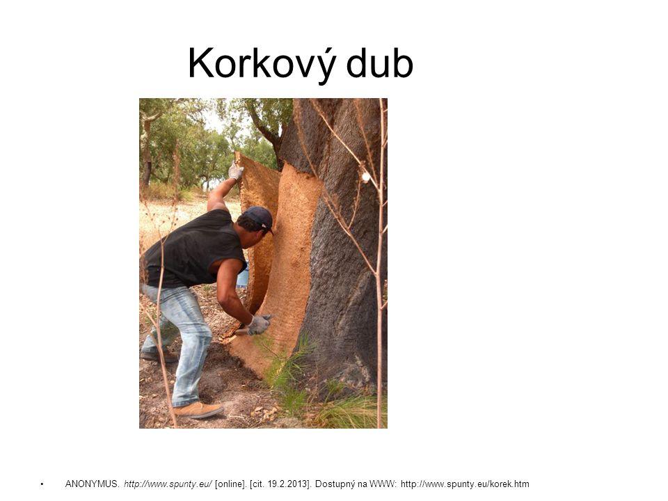 ANONYMUS. http://www.spunty.eu/ [online]. [cit. 19.2.2013]. Dostupný na WWW: http://www.spunty.eu/korek.htm Korkový dub
