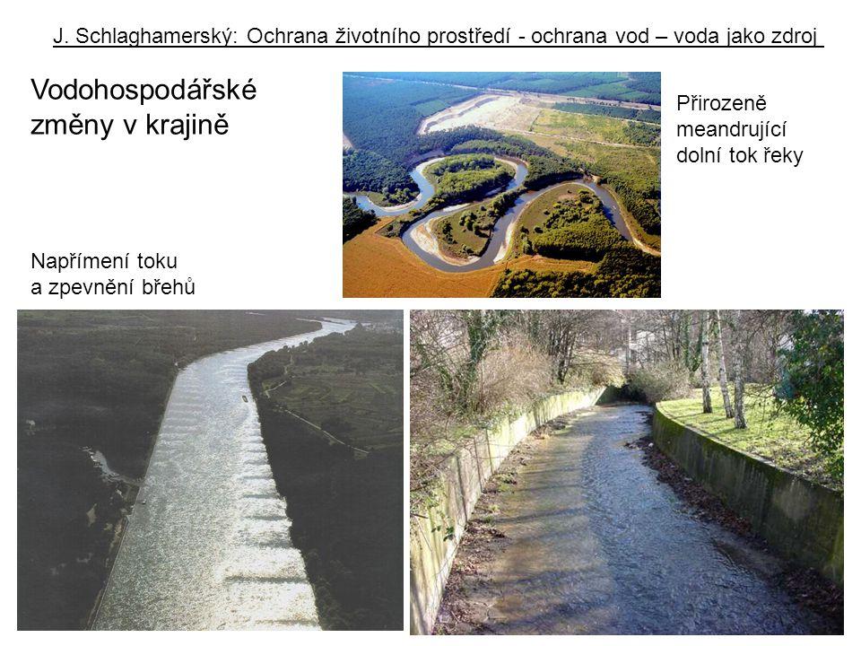 J. Schlaghamerský: Ochrana životního prostředí - ochrana vod – voda jako zdroj Přirozeně meandrující dolní tok řeky Napřímení toku a zpevnění břehů Vo