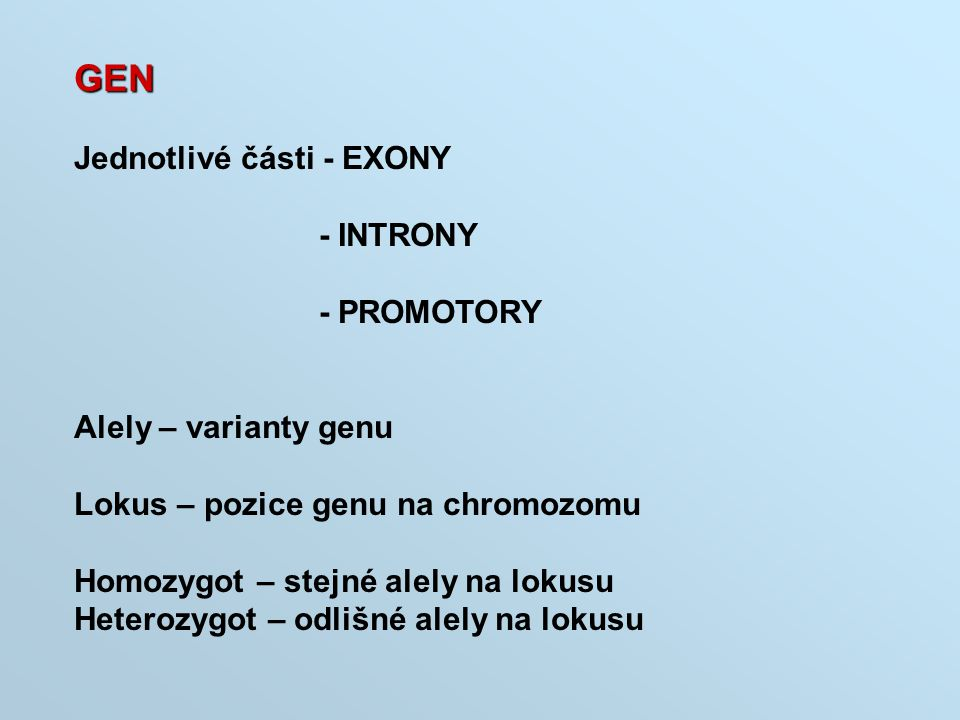 GEN Jednotlivé části - EXONY - INTRONY - PROMOTORY Alely – varianty genu Lokus – pozice genu na chromozomu Homozygot – stejné alely na lokusu Heterozy
