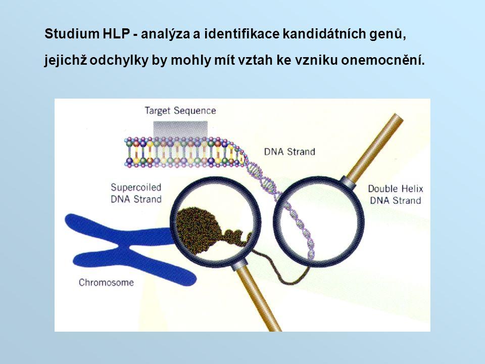 Studium HLP - analýza a identifikace kandidátních genů, jejichž odchylky by mohly mít vztah ke vzniku onemocnění.