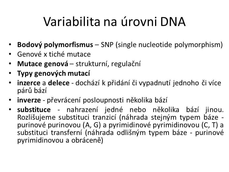 Variabilita na úrovni DNA Bodový polymorfismus – SNP (single nucleotide polymorphism) Genové x tiché mutace Mutace genová – strukturní, regulační Typy