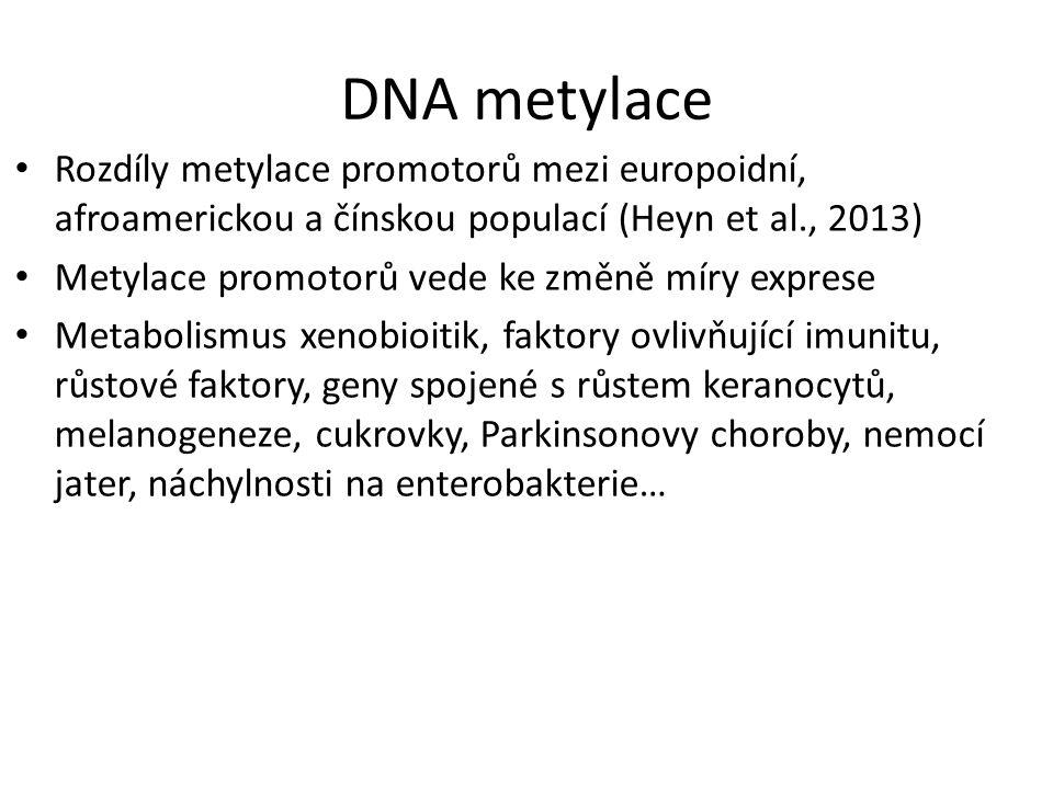 DNA metylace Rozdíly metylace promotorů mezi europoidní, afroamerickou a čínskou populací (Heyn et al., 2013) Metylace promotorů vede ke změně míry ex