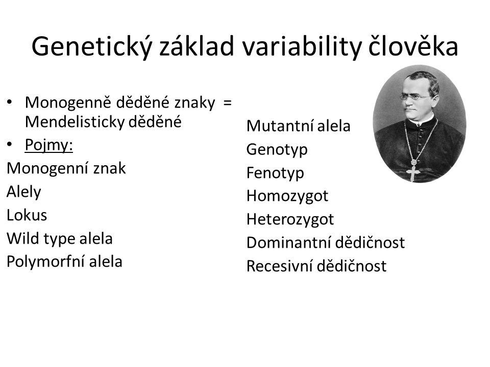 Genetický základ variability člověka Monogenně děděné znaky = Mendelisticky děděné Pojmy: Monogenní znak Alely Lokus Wild type alela Polymorfní alela