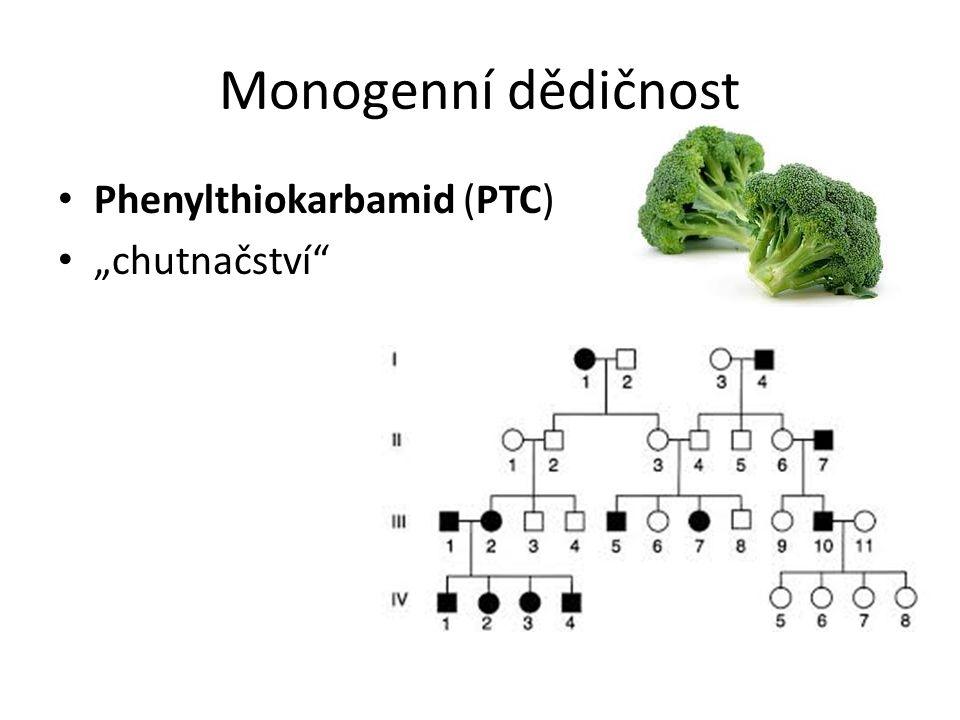 """Monogenní dědičnost Phenylthiokarbamid (PTC) """"chutnačství"""""""
