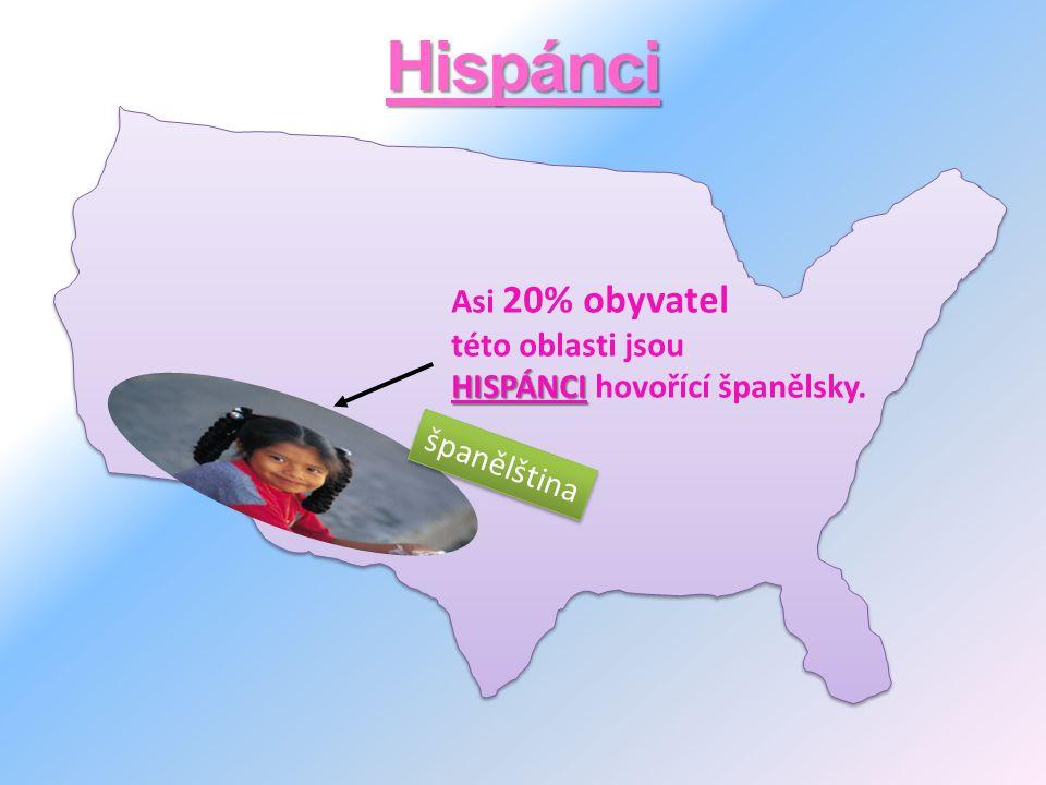 Hispánci Asi 20% obyvatel této oblasti jsou HISPÁNCI HISPÁNCI hovořící španělsky. španělština