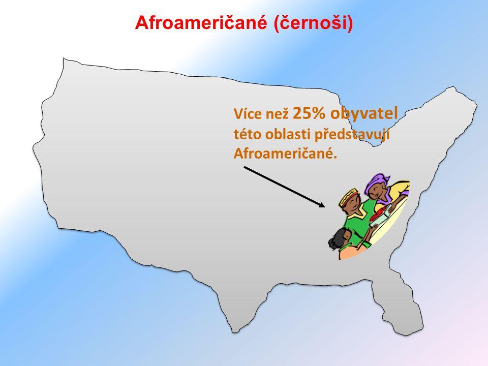 Afroameričané (černoši) Více než 25% obyvatel této oblasti představují Afroameričané.