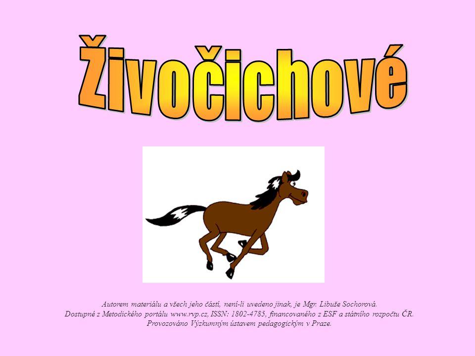 Autorem materiálu a všech jeho částí, není-li uvedeno jinak, je Mgr. Libuše Sochorová. Dostupné z Metodického portálu www.rvp.cz, ISSN: 1802-4785, fin