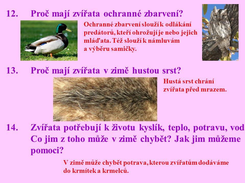 12.Proč mají zvířata ochranné zbarvení? 13.Proč mají zvířata v zimě hustou srst? 14.Zvířata potřebují k životu kyslík, teplo, potravu, vodu. Co jim z