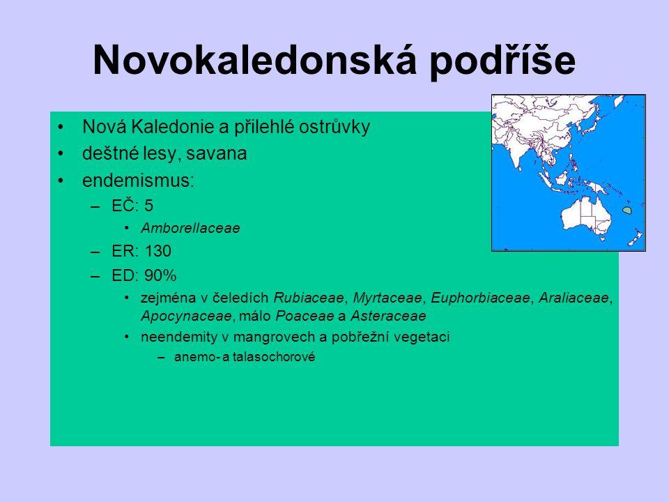 Novokaledonská podříše Nová Kaledonie a přilehlé ostrůvky deštné lesy, savana endemismus: –EČ: 5 Amborellaceae –ER: 130 –ED: 90% zejména v čeledích Ru