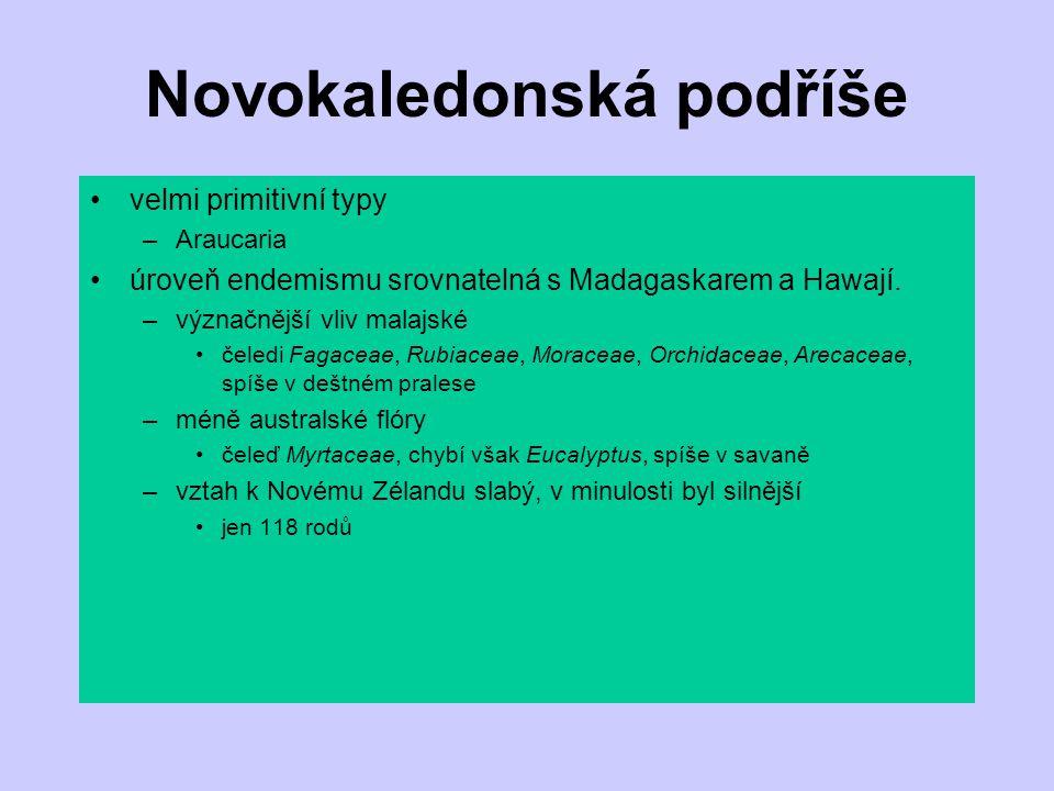 Novokaledonská podříše velmi primitivní typy –Araucaria úroveň endemismu srovnatelná s Madagaskarem a Hawají. –význačnější vliv malajské čeledi Fagace