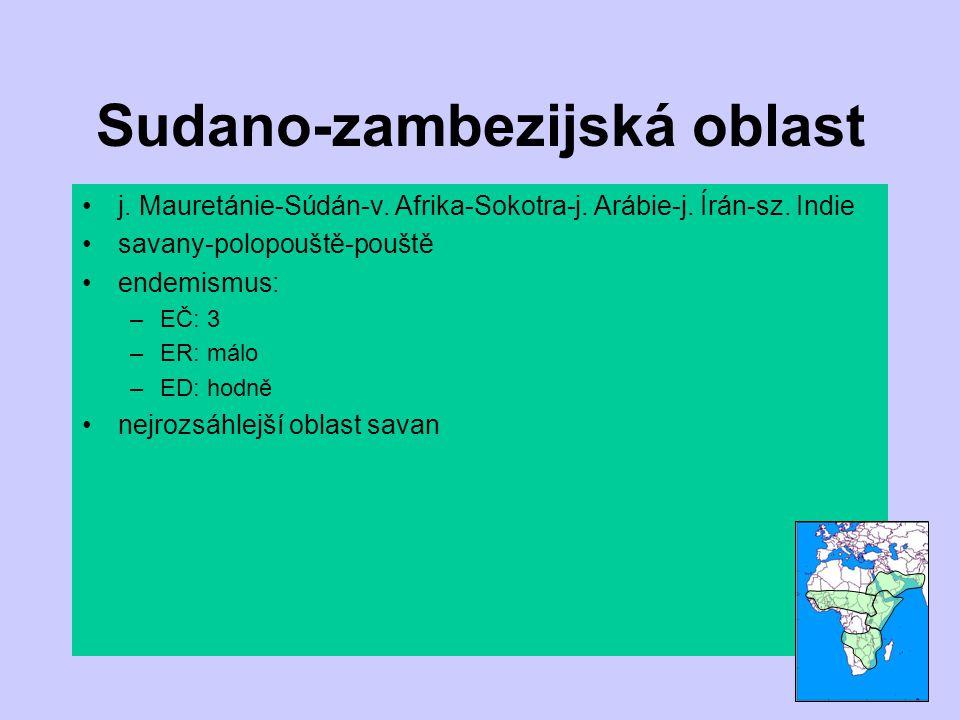 Sudano-zambezijská oblast j. Mauretánie-Súdán-v. Afrika-Sokotra-j. Arábie-j. Írán-sz. Indie savany-polopouště-pouště endemismus: –EČ: 3 –ER: málo –ED: