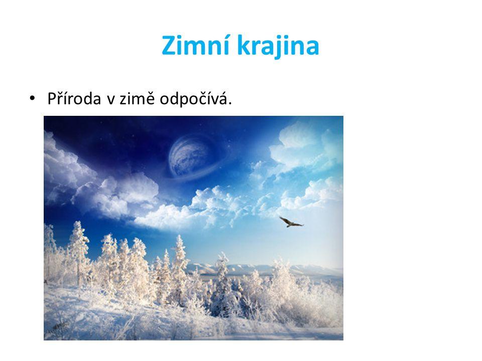 Zimní krajina Příroda v zimě odpočívá.