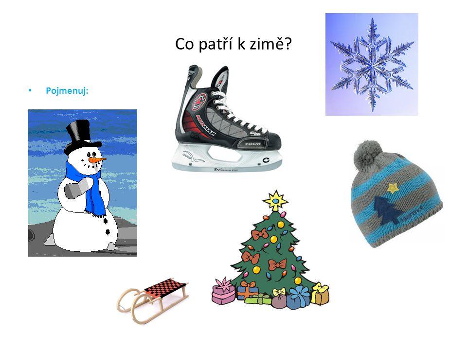 Co patří k zimě? Pojmenuj: