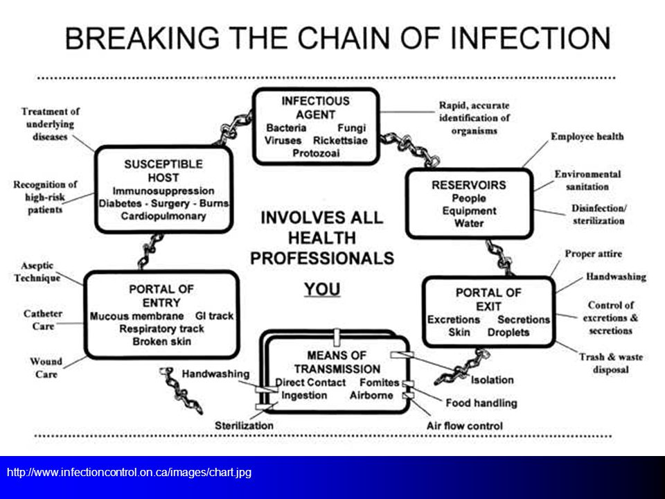 http://www.infectioncontrol.on.ca/images/chart.jpg
