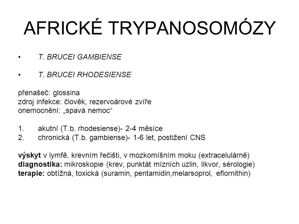 """AFRICKÉ TRYPANOSOMÓZY T. BRUCEI GAMBIENSE T. BRUCEI RHODESIENSE přenašeč: glossina zdroj infekce: člověk, rezervoárové zvíře onemocnění: """"spavá nemoc"""""""