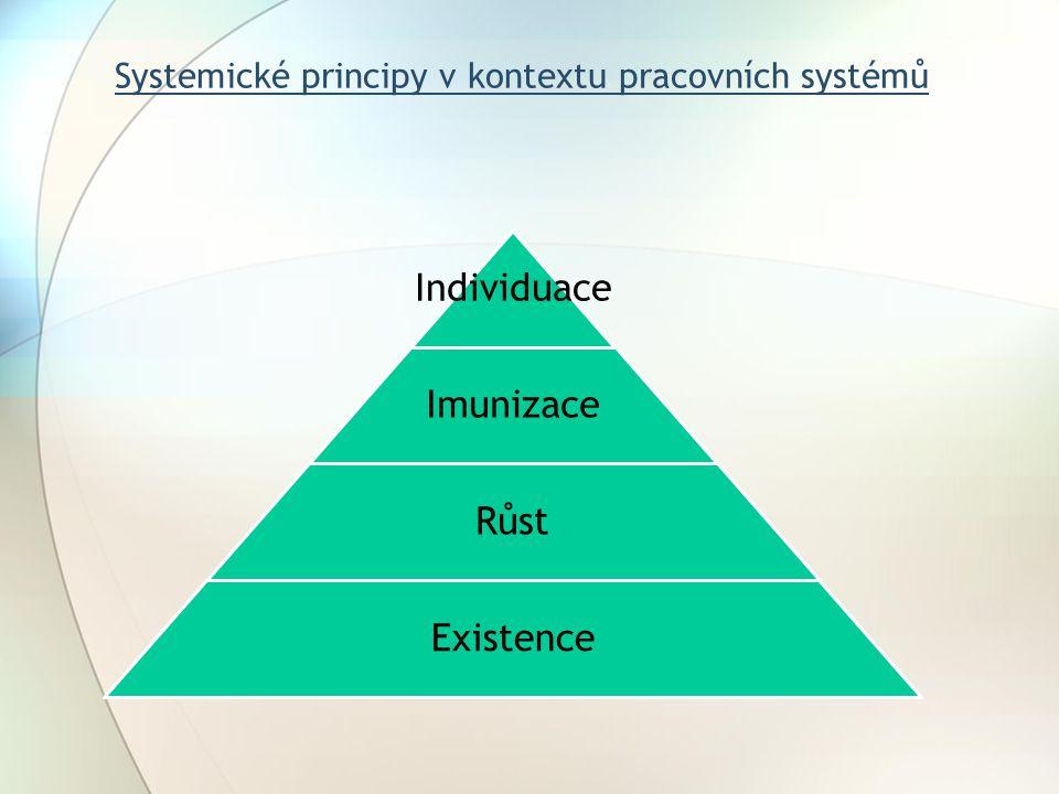 Systemické principy v kontextu pracovních systémů Individuace Imunizace Růst Existence
