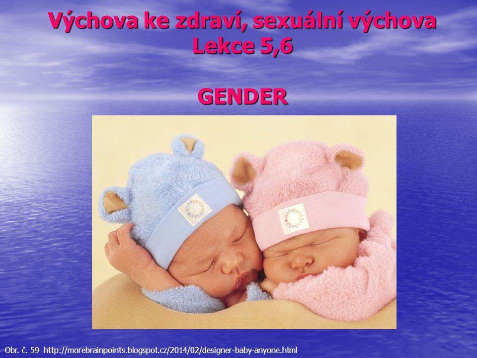Výchova ke zdraví, sexuální výchova Lekce 5,6 GENDER Obr. č. 59 http://morebrainpoints.blogspot.cz/2014/02/designer-baby-anyone.html