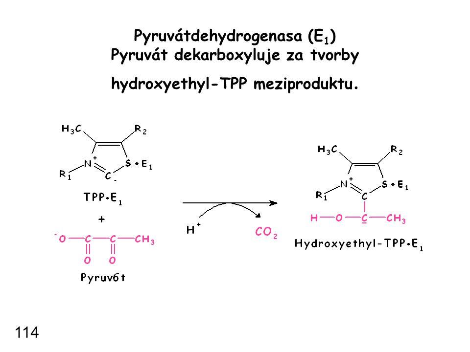 Pyruvátdehydrogenasa (E 1 ) Pyruvát dekarboxyluje za tvorby hydroxyethyl-TPP meziproduktu. 114