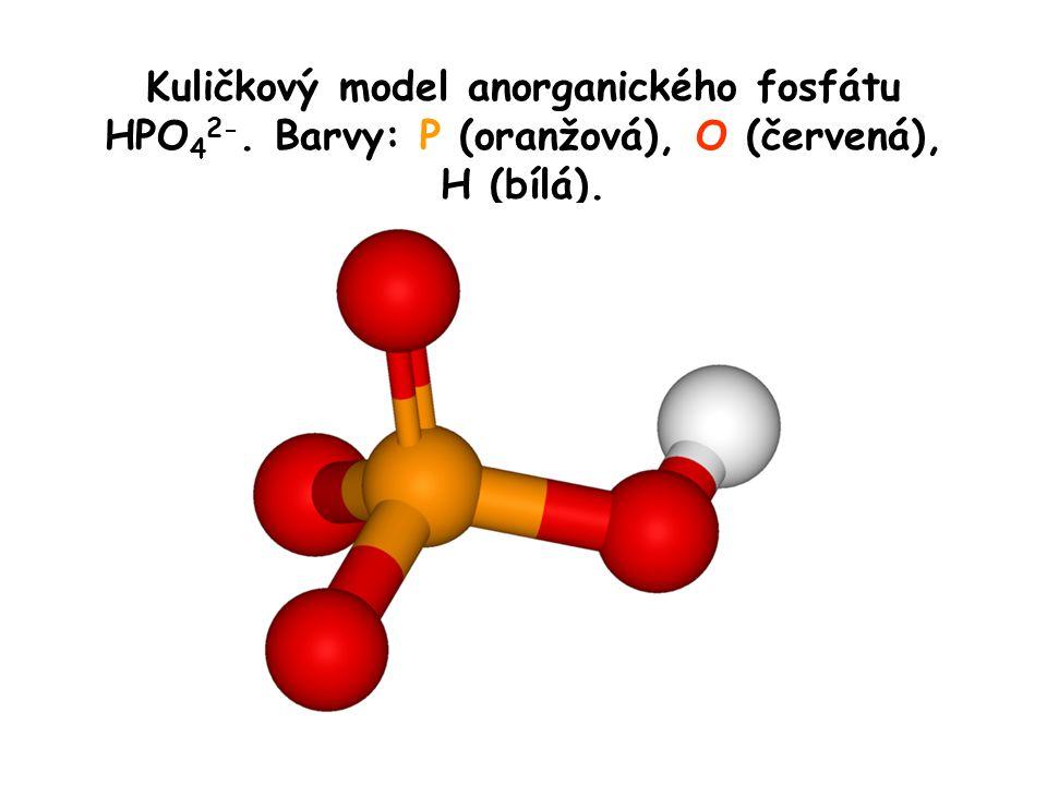 Kuličkový model anorganického fosfátu HPO 4 2-. Barvy: P (oranžová), O (červená), H (bílá).