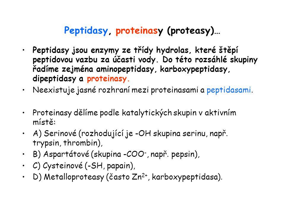 Peptidasy, proteinasy (proteasy)… Peptidasy jsou enzymy ze třídy hydrolas, které štěpí peptidovou vazbu za účasti vody.