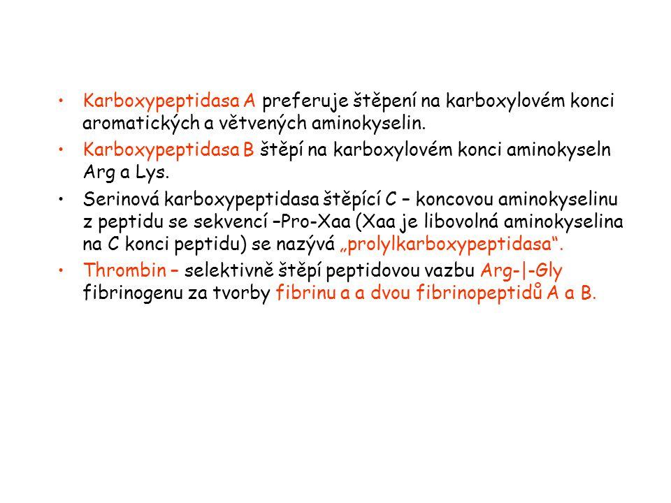 Karboxypeptidasa A preferuje štěpení na karboxylovém konci aromatických a větvených aminokyselin.