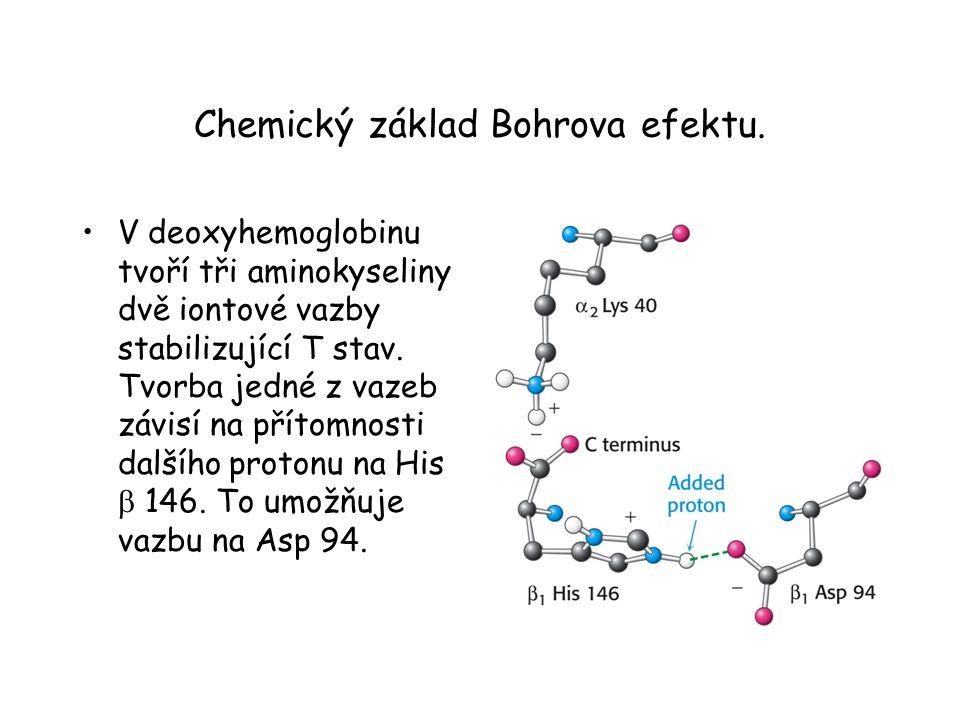 Chemický základ Bohrova efektu.