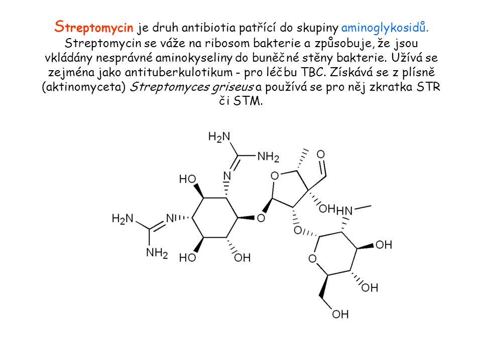 S treptomycin je druh antibiotia patřící do skupiny aminoglykosidů.