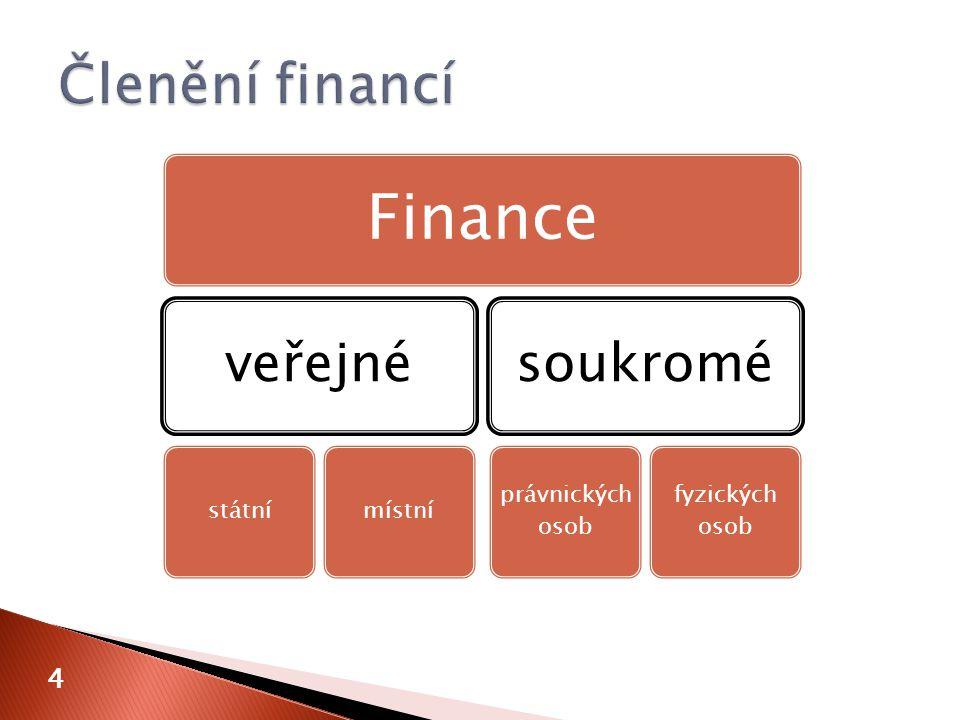 4 Finance veřejné státnímístní soukromé právnických osob fyzických osob