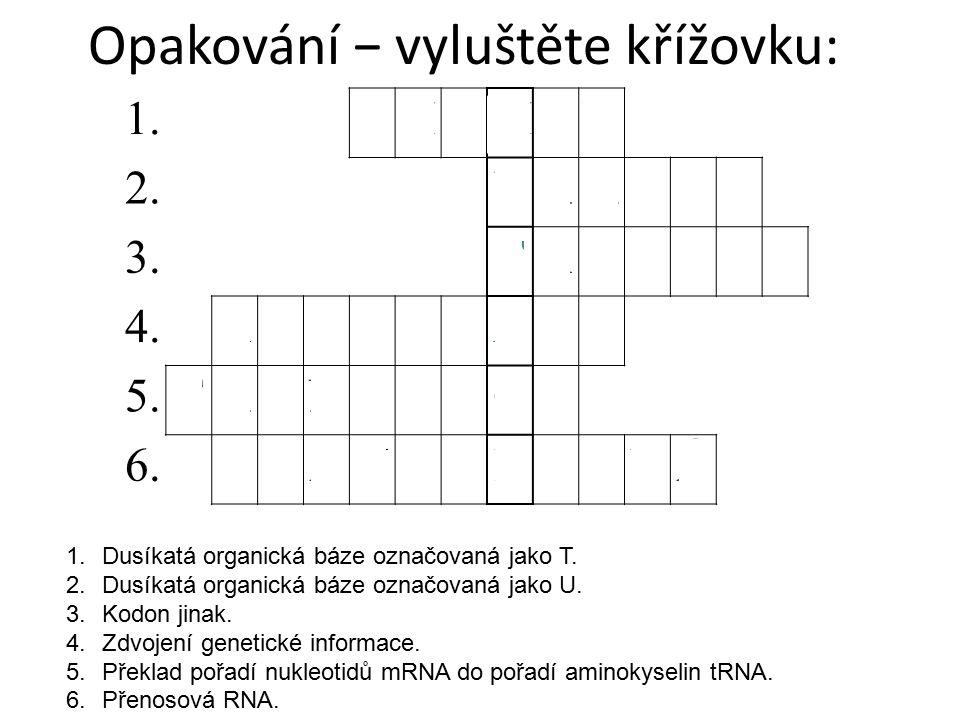 Opakování − vyluštěte křížovku: 1.Dusíkatá organická báze označovaná jako T. 2.Dusíkatá organická báze označovaná jako U. 3.Kodon jinak. 4.Zdvojení ge