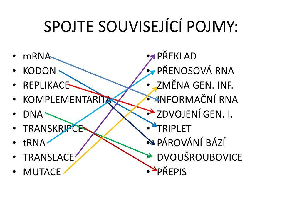 SPOJTE SOUVISEJÍCÍ POJMY: mRNA KODON REPLIKACE KOMPLEMENTARITA DNA TRANSKRIPCE tRNA TRANSLACE MUTACE PŘEKLAD PŘENOSOVÁ RNA ZMĚNA GEN. INF. INFORMAČNÍ