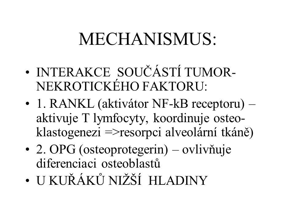 MECHANISMUS: INTERAKCE SOUČÁSTÍ TUMOR- NEKROTICKÉHO FAKTORU: 1. RANKL (aktivátor NF-kB receptoru) – aktivuje T lymfocyty, koordinuje osteo- klastogene