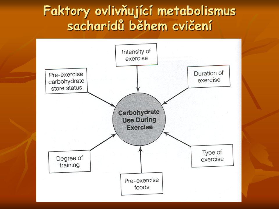 Faktory ovlivňující metabolismus sacharidů během cvičení