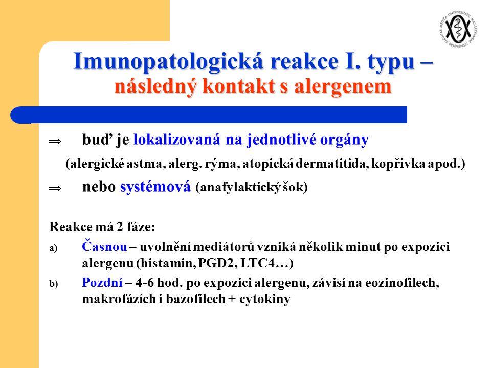Imunopatologická reakce I. typu – následný kontakt s alergenem  buď je lokalizovaná na jednotlivé orgány (alergické astma, alerg. rýma, atopická derm