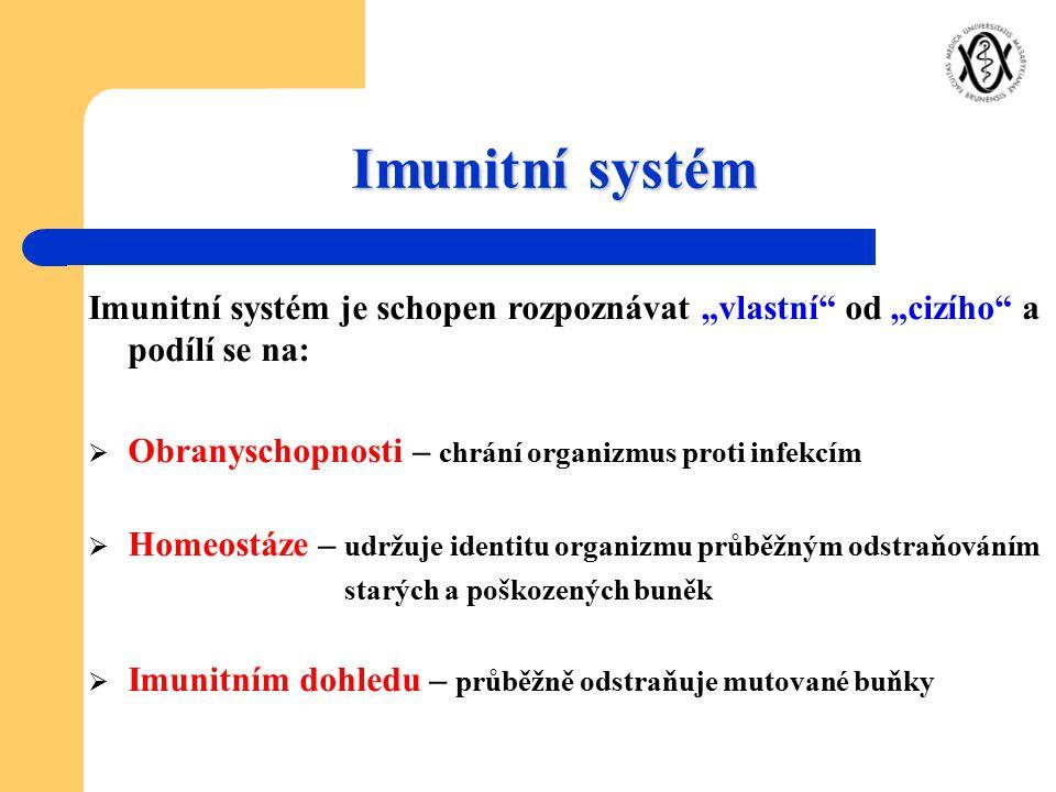 """Imunitní systém Imunitní systém je schopen rozpoznávat """"vlastní"""" od """"cizího"""" a podílí se na:  Obranyschopnosti – chrání organizmus proti infekcím  H"""