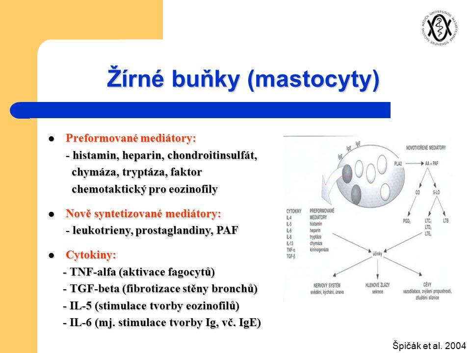 Žírné buňky (mastocyty) Preformované mediátory: Preformované mediátory: - histamin, heparin, chondroitinsulfát, - histamin, heparin, chondroitinsulfát