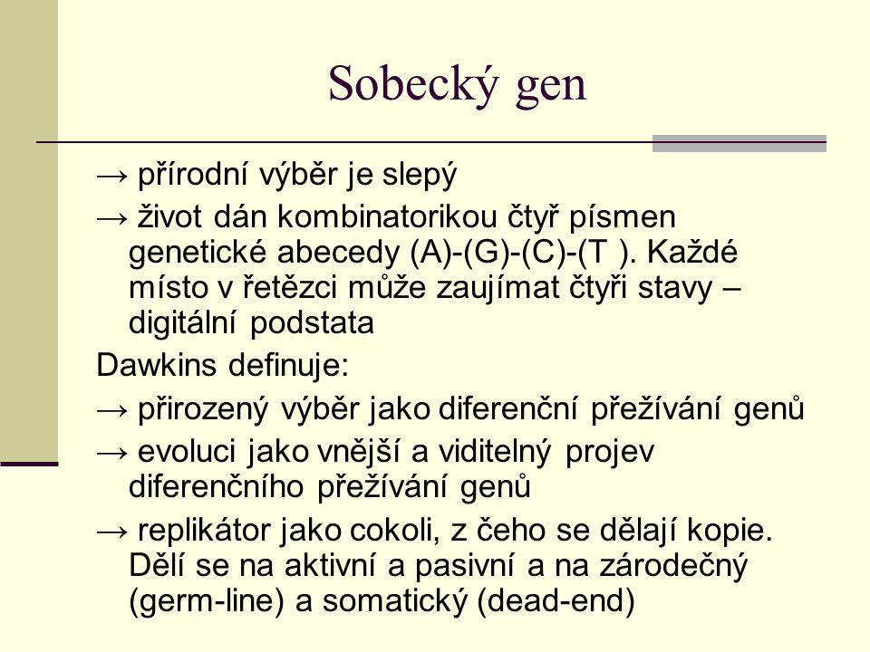 Sobecký gen → přírodní výběr je slepý → život dán kombinatorikou čtyř písmen genetické abecedy (A)-(G)-(C)-(T ). Každé místo v řetězci může zaujímat č
