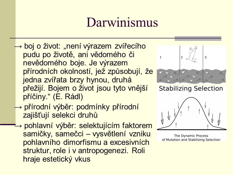 """Darwinismus → boj o život: """"není výrazem zvířecího pudu po životě, ani vědomého či nevědomého boje. Je výrazem přírodních okolností, jež způsobují, že"""