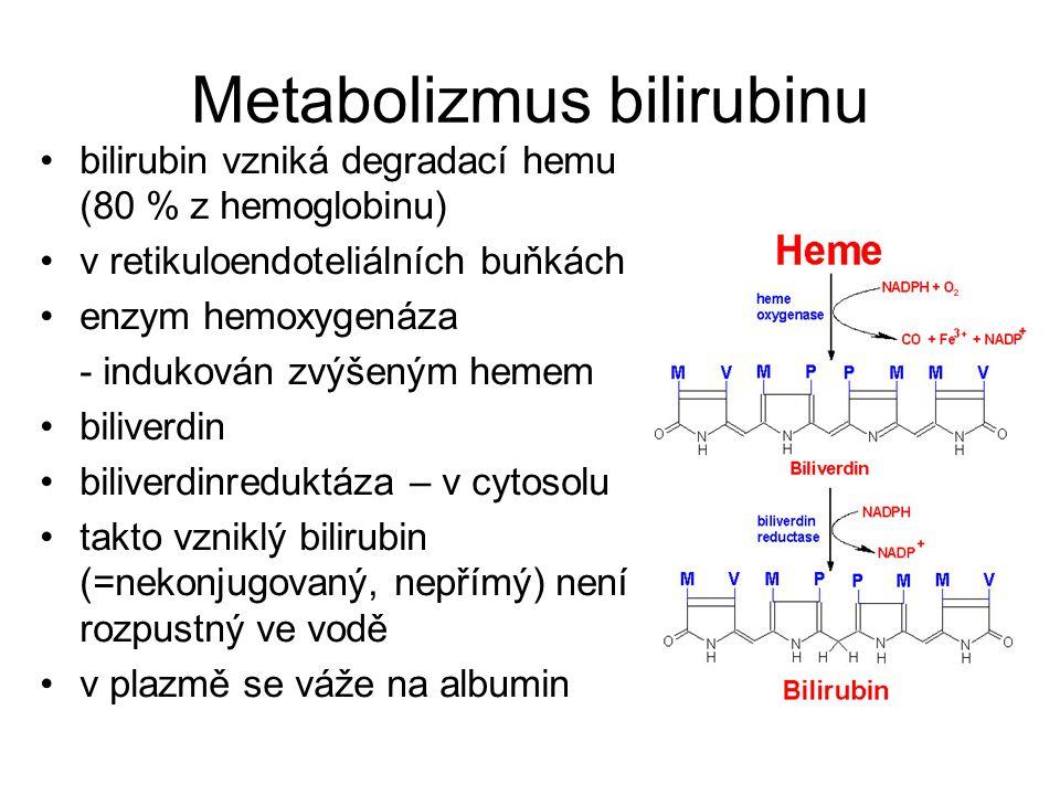 Metabolizmus bilirubinu albumin – dost vazebných míst a velká afinita pro bilirubin proto je za normálních podmínek koncentrace bilirubinu v plazmě velmi nízká – může být vytěsněn některými látkami (salicyláty) v jaterních kapilárách se odděluje od albuminu a pomocí bílkovinného nosiče se dostává do hepatocytu – velká kapacita podléhá konjugaci – mění se na ve vodě rozpustnou sloučeninu a může být vyloučen do žluči