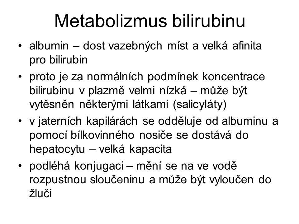 Metabolizmus bilirubinu albumin – dost vazebných míst a velká afinita pro bilirubin proto je za normálních podmínek koncentrace bilirubinu v plazmě ve