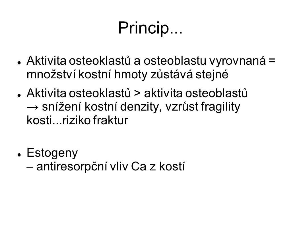 Princip...