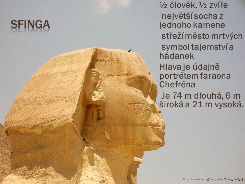 - ½ člověk, ½ zvíře - největší socha z jednoho kamene - střeží město mrtvých - symbol tajemství a hádanek - Hlava je údajně portrétem faraona Chefréna - Je 74 m dlouhá, 6 m široká a 21 m vysoká.