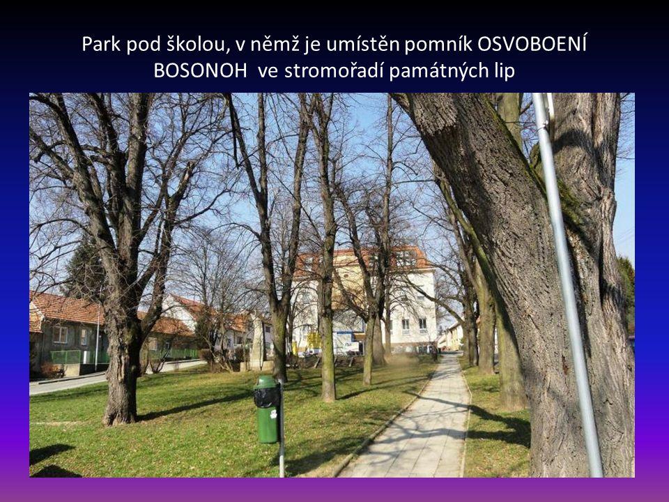Na spodní části Bosonožského náměstí je socha sv. Jana Nepomuckého, za kterou začíná lipová alej s památnými stromy